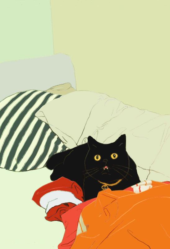 cat gremlin portrait