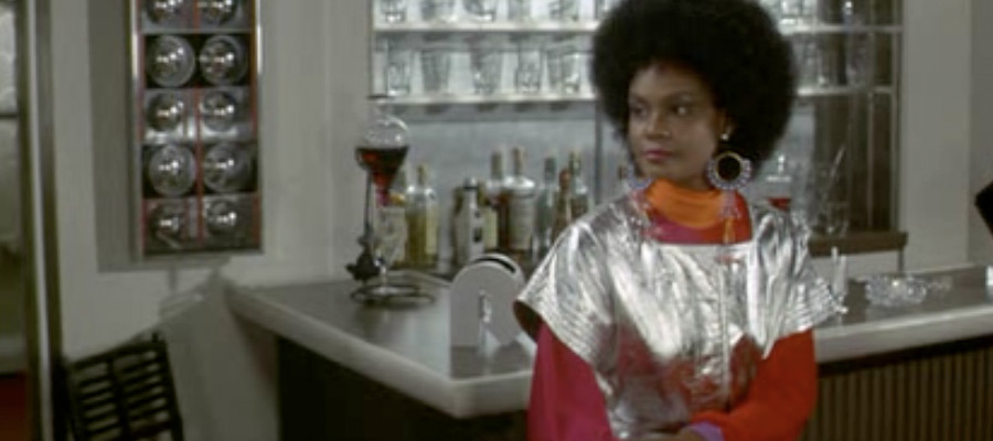 Cleopatra Jones Afro and Silver