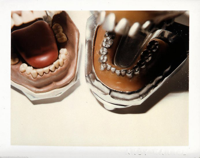 andy warhol still life polaroids dentures