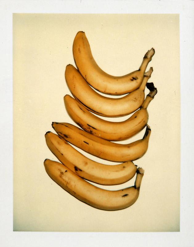 andy warhol still life polaroids bananas